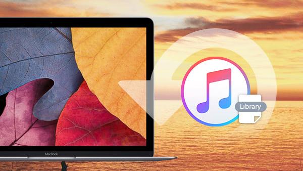 So stellen Sie die iTunes-Mediathek wieder her